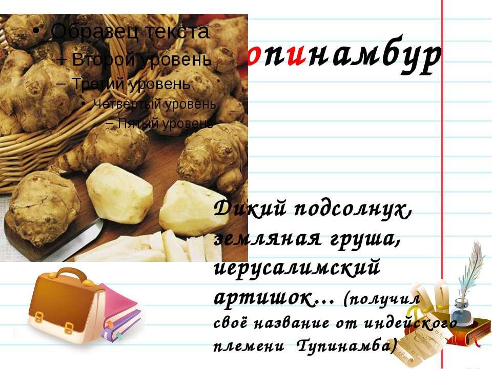 Топинамбур Дикий подсолнух, земляная груша, иерусалимский артишок... (получил...
