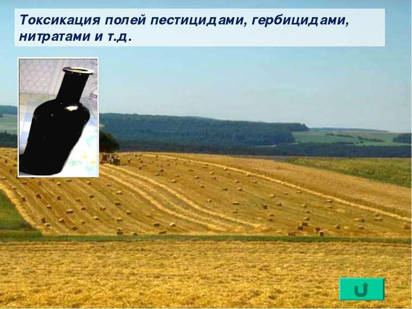 Токсикация полей пестицидами, гербицидами, нитратами и т.д.