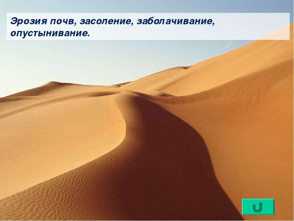 Эрозия почв, засоление, заболачивание, опустынивание.