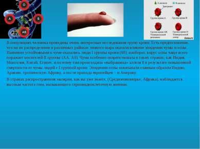 В популяциях человека проведены очень интересные исследования групп крови. Ес...