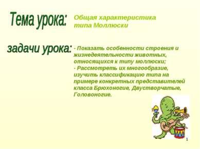 Общая характеристика типа Моллюски - Показать особенности строения и жизнедея...
