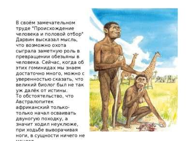 """В своём замечательном труде """"Происхождение человека и половой отбор"""" Дарвин в..."""