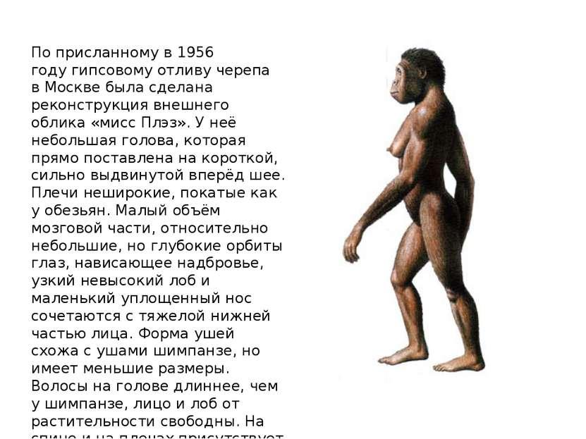 По присланному в1956 годугипсовому отливу черепа вМосквебыла сделана реко...