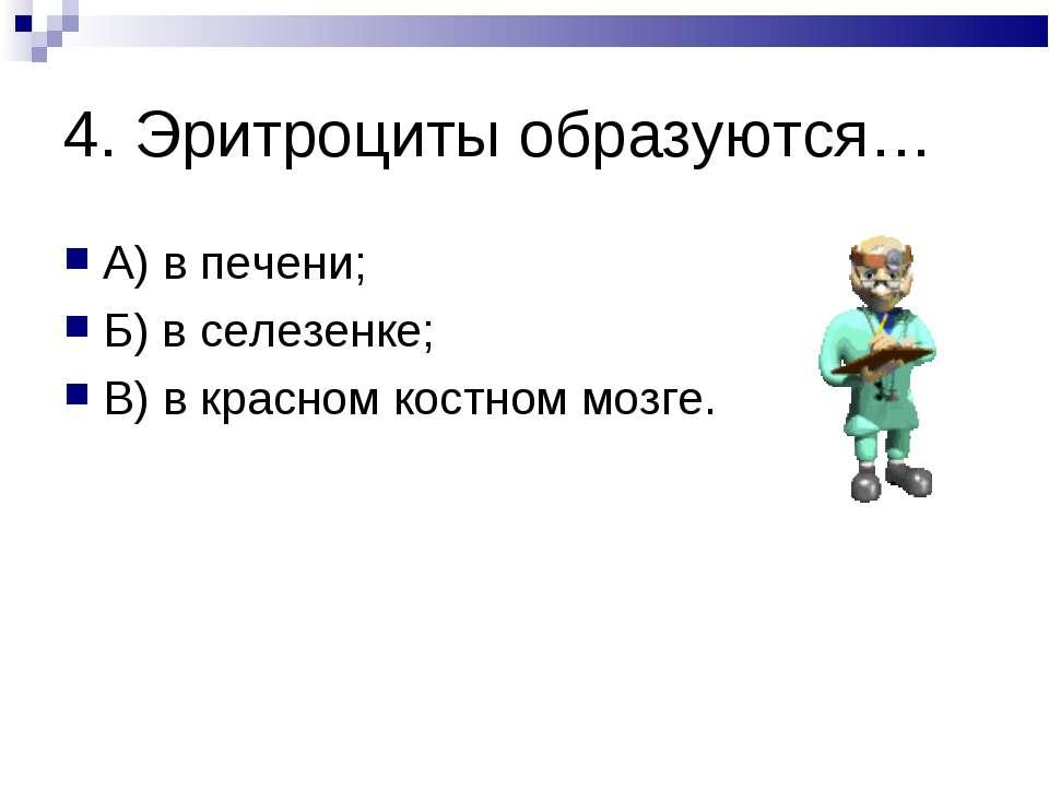 4. Эритроциты образуются… А) в печени; Б) в селезенке; В) в красном костном м...