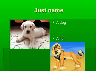 Just name A dog A lion