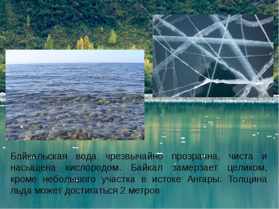 Байкальская вода чрезвычайно прозрачна, чиста и насыщена кислородом. Байкал з...