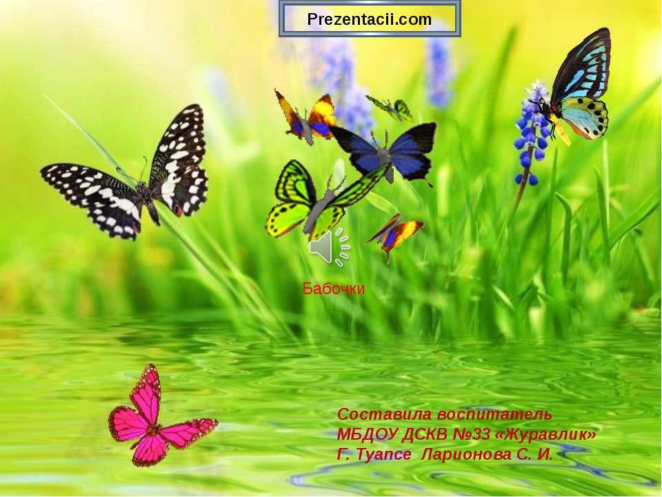 Конспект, фото с надписью спасибо за просмотр презентации про бабочек