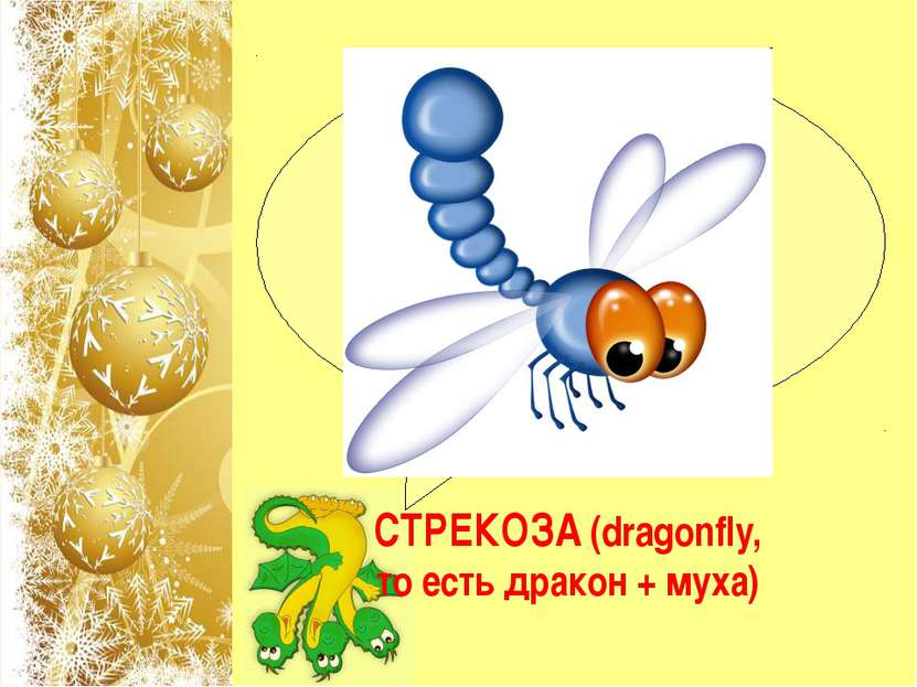 """Название какого насекомого на английском языке складывается из двух слов: """"др..."""