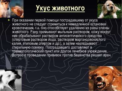 Укус животного При оказании первой помощи пострадавшему от укуса животного не...