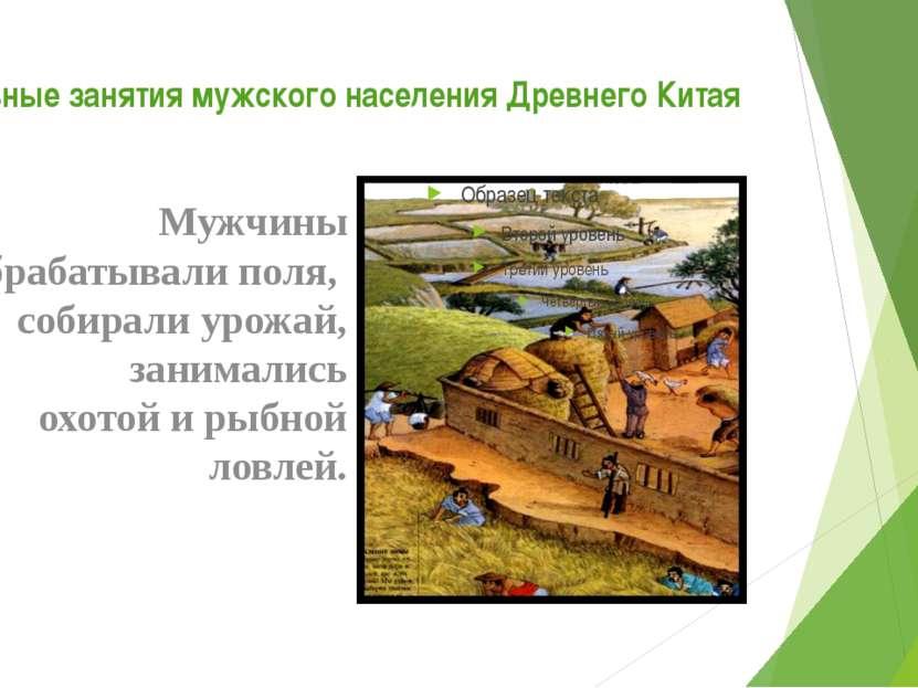 Основные занятия мужского населения Древнего Китая Мужчины обрабатывали поля,...