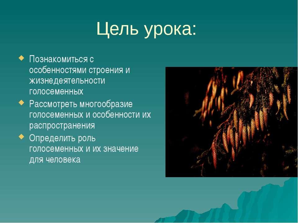 Цель урока: Познакомиться с особенностями строения и жизнедеятельности голосе...
