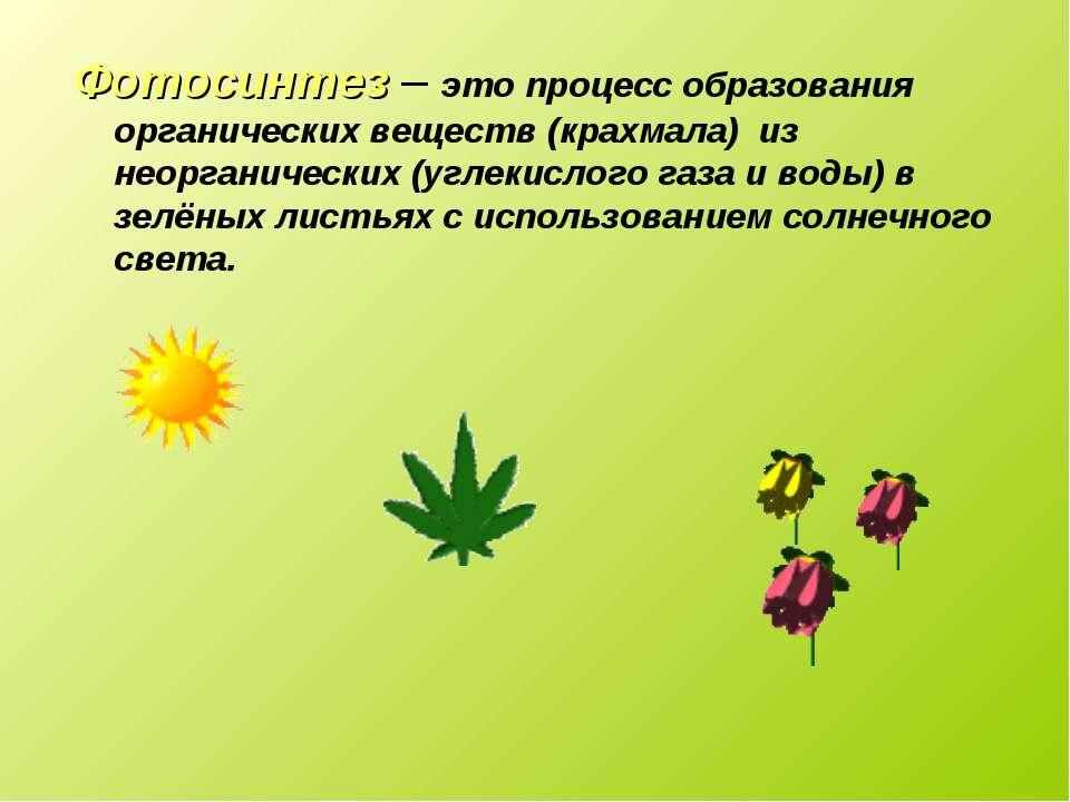 Фотосинтез – это процесс образования органических веществ (крахмала) из неорг...