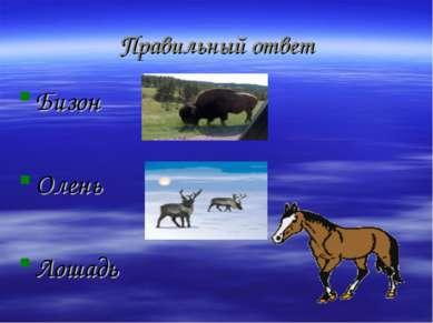 Правильный ответ Бизон Олень Лошадь