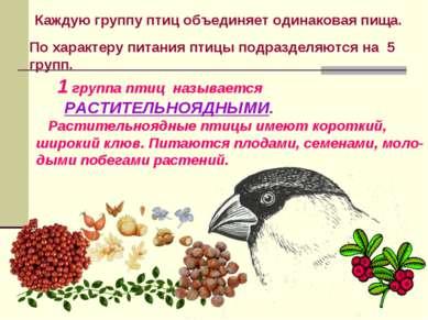 Каждую группу птиц объединяет одинаковая пища. 1 группа птиц называется РАСТИ...