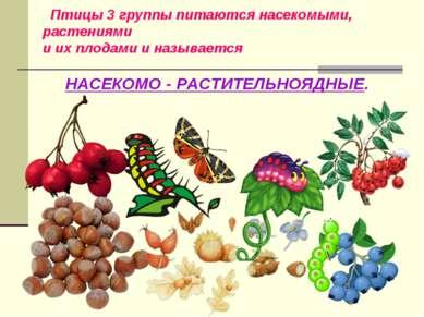 Птицы 3 группы питаются насекомыми, растениями и их плодами и называется НАСЕ...