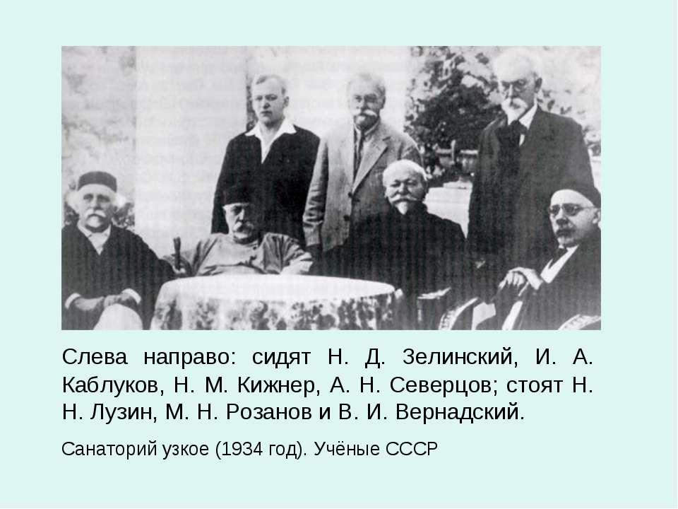 Слева направо: сидят Н. Д. Зелинский, И. А. Каблуков, Н. М. Кижнер, А. Н. Сев...