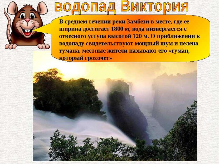 В среднем течении реки Замбези в месте, где ее ширина достигает 1800 м, вода ...