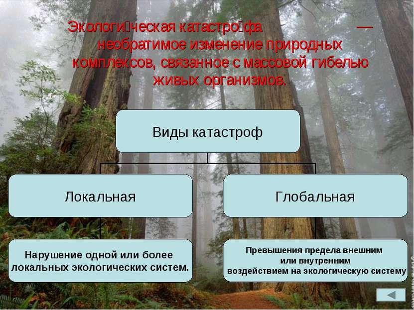 Экологи ческая катастро фа — необратимое изменение природных комплексов, связ...