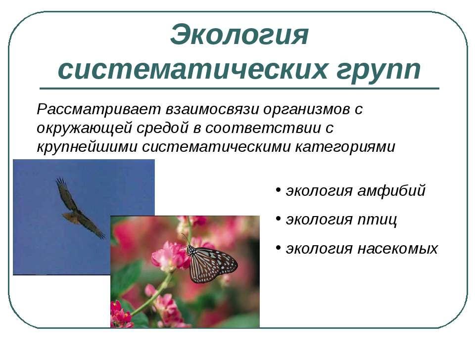 Экология систематических групп Рассматривает взаимосвязи организмов с окружаю...