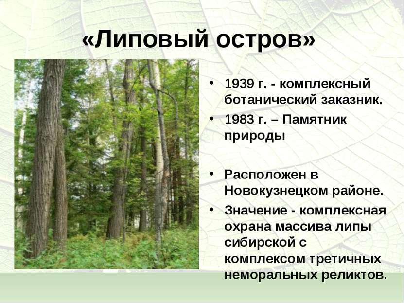 «Липовый остров» 1939 г. - комплексный ботанический заказник. 1983 г. – Памят...