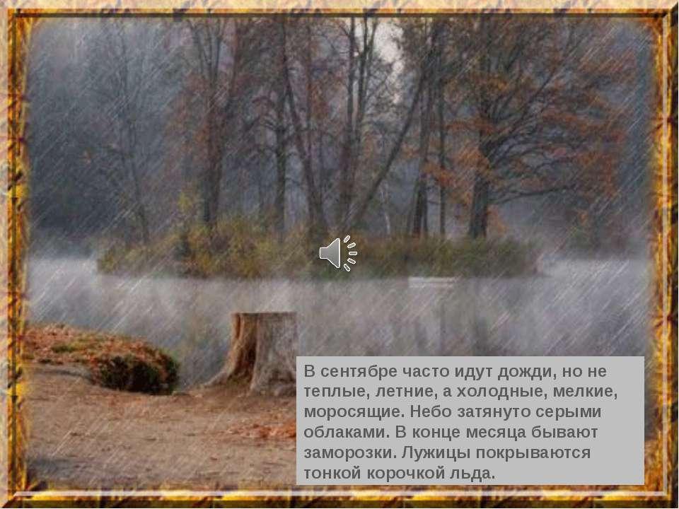 В сентябре часто идут дожди, но не теплые, летние, а холодные, мелкие, морося...