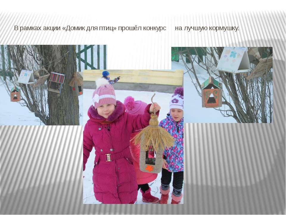 В рамках акции «Домик для птиц» прошёл конкурс на лучшую кормушку.