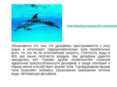 Объясняется это тем, что дельфины пристраиваются к носу судна и используют ги...