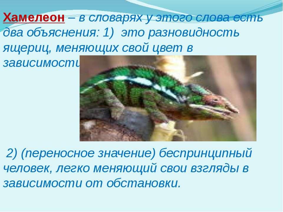 Хамелеон – в словарях у этого слова есть два объяснения: 1) это разновидность...