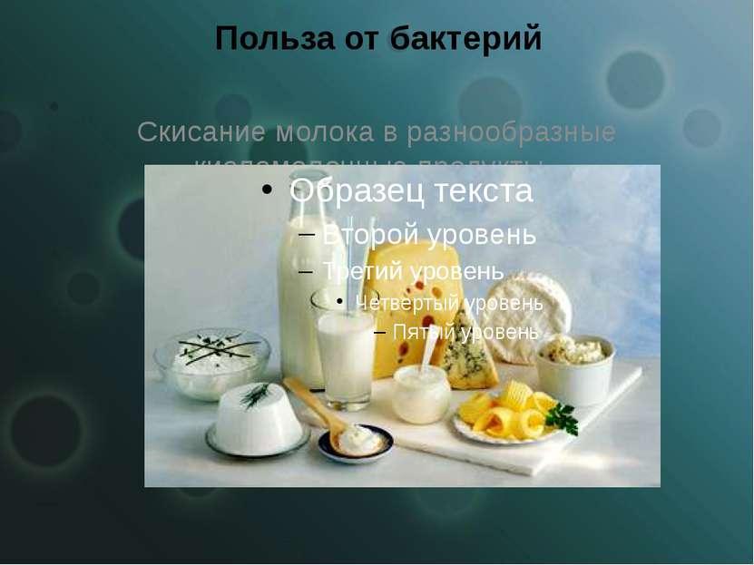 Польза от бактерий Скисание молока в разнообразные кисломолочные продукты.