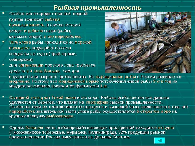 Рыбная промышленность Особое место среди отраслей первой группы занимает рыбн...