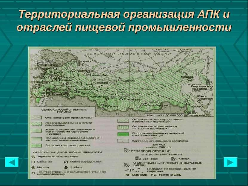 Территориальная организация АПК и отраслей пищевой промышленности