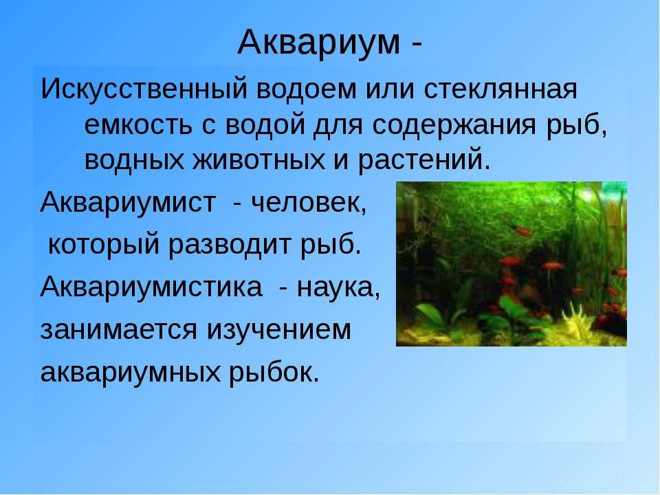 Аквариум - Искусственный водоем или стеклянная емкость с водой для содержания...