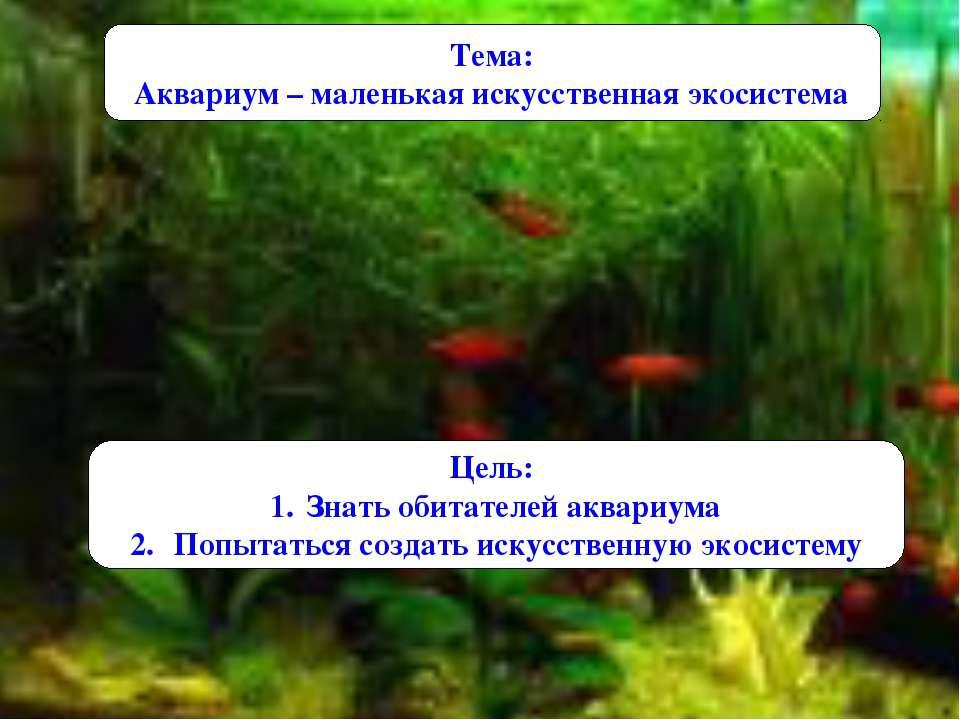 Тема: Аквариум – маленькая искусственная экосистема Цель: Знать обитателей ак...