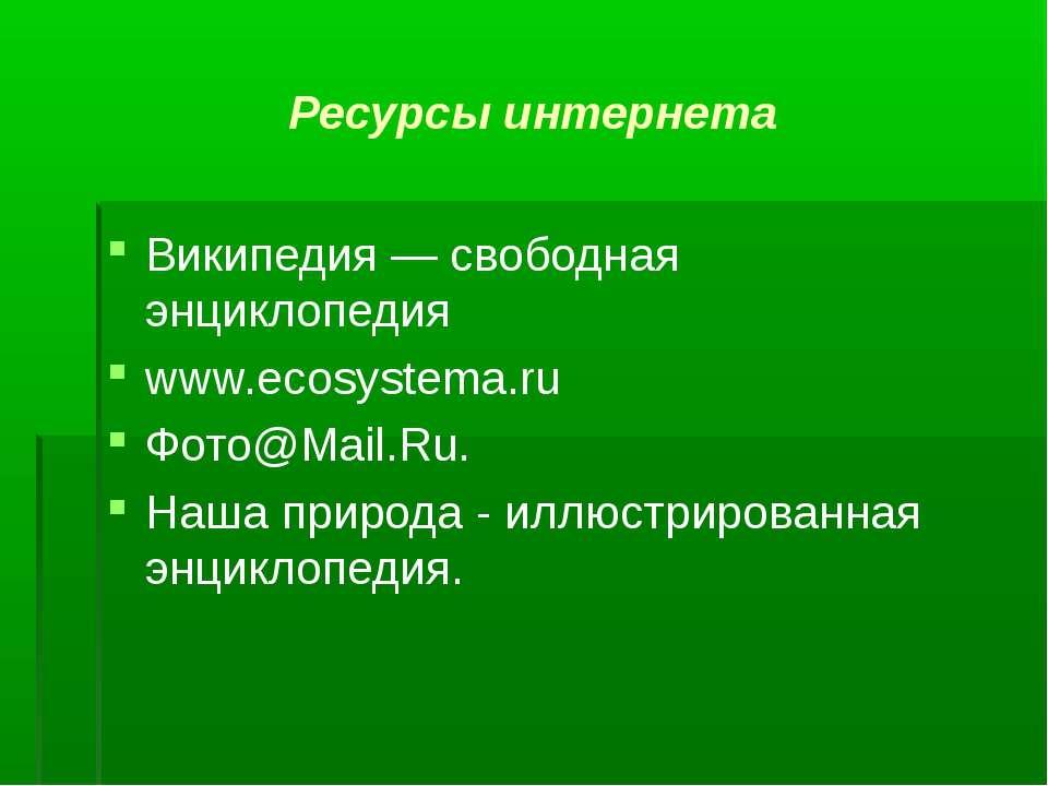 Ресурсы интернета Википедия — свободная энциклопедия www.eсоsystеmа.ru Фото@M...