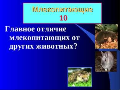 Млекопитающие 10 Главное отличие млекопитающих от других животных?