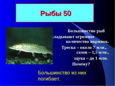 Рыбы 50 Большинство рыб откладывают огромное количество икринок. Треска – око...