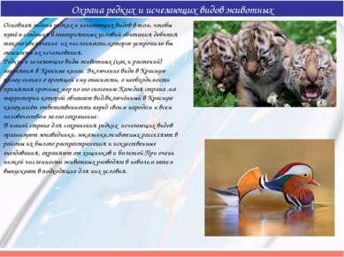 Охрана редких и исчезающих видов животных Основная задача редких и исчезающих...