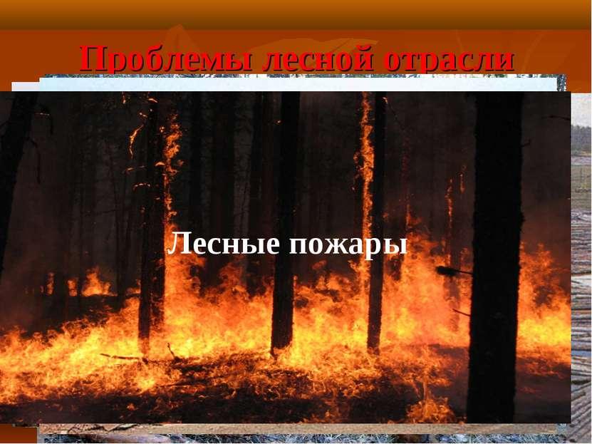 Проблемы лесной отрасли Истощение запасов древесины Молевой сплав леса Отходы...
