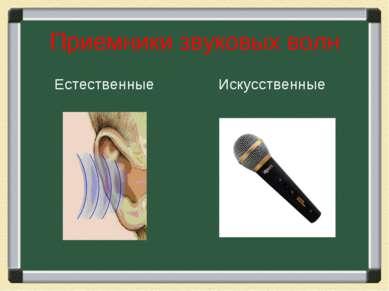 Приемники звуковых волн Естественные Искусственные