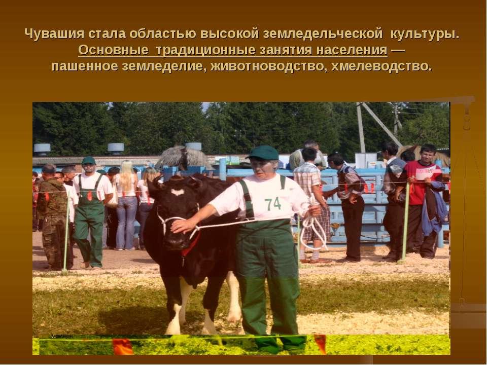 Чувашия стала областью высокой земледельческой культуры. Основные традиционны...