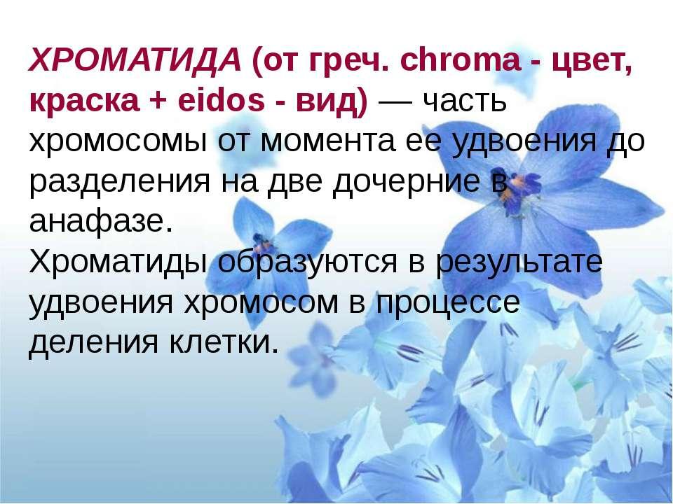 3. Ядрышко В ядрышках происходит синтез рРНК и сборка субъединиц рибосом В яд...