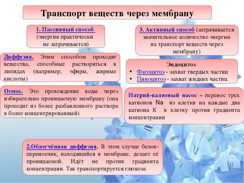 Транспорт веществ через мембрану 1. Пассивный способ (энергия практически не ...