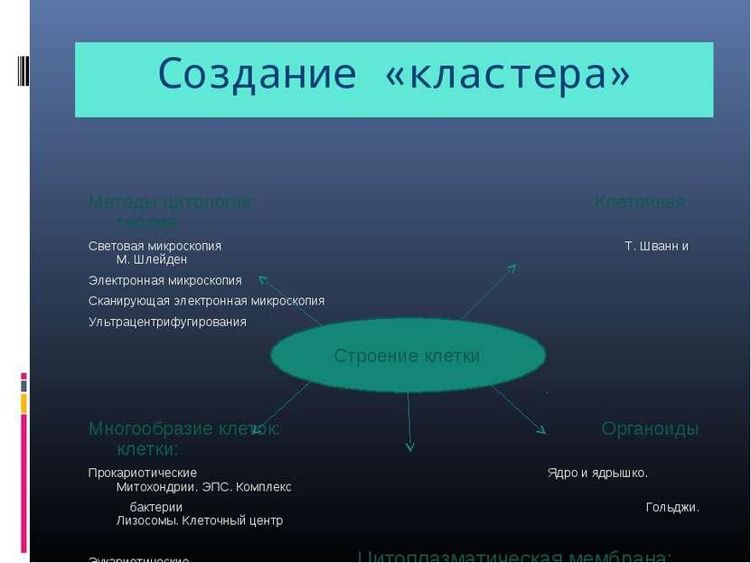 Создание «кластера» Методы цитологии: Клеточная теория Световая микроскопия Т...