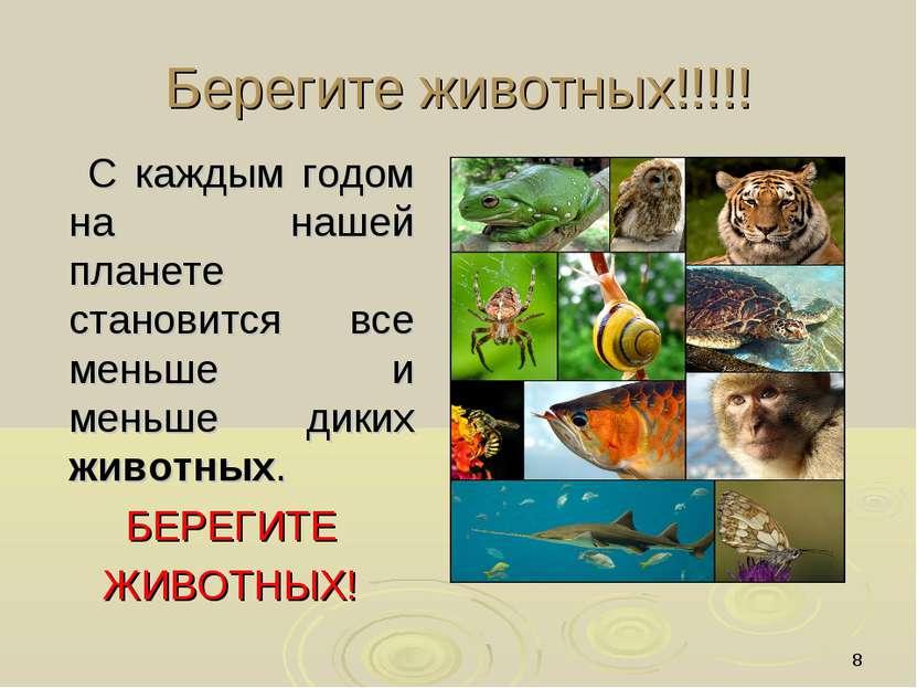 * Берегите животных!!!!! С каждым годом на нашей планете становится все меньш...