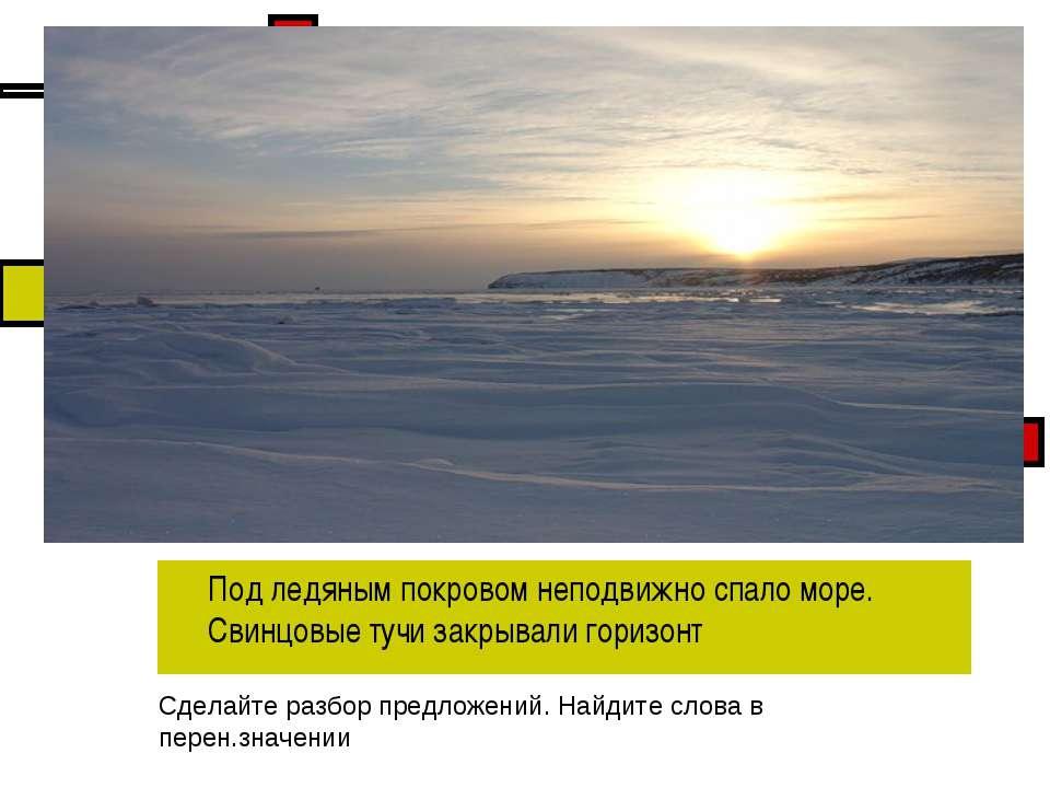 Под ледяным покровом неподвижно спало море. Свинцовые тучи закрывали горизонт...