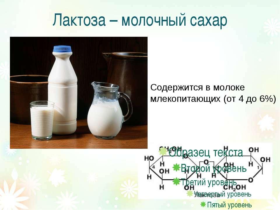 Лактоза – молочный сахар Содержится в молоке млекопитающих (от 4 до 6%)