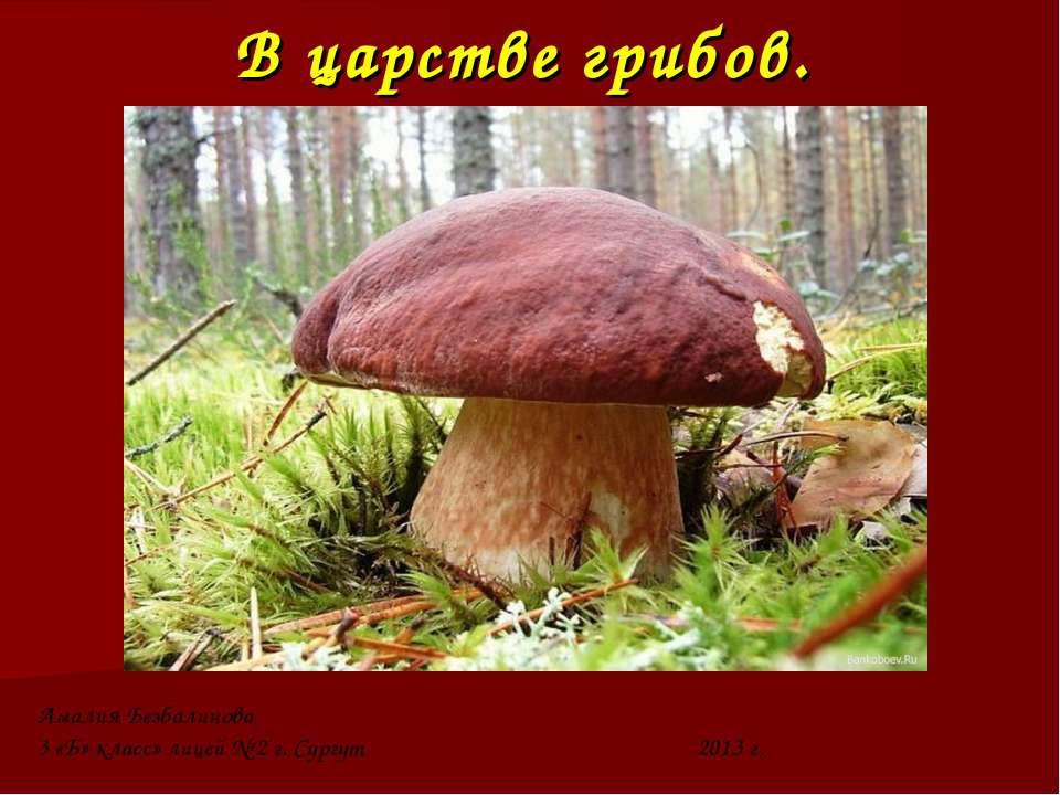 В царстве грибов. Амалия Безбалинова 3 «Б» класс» лицей № 2 г. Сургут 2013 г.