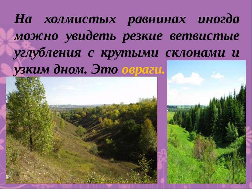 На холмистых равнинах иногда можно увидеть резкие ветвистые углубления с крут...