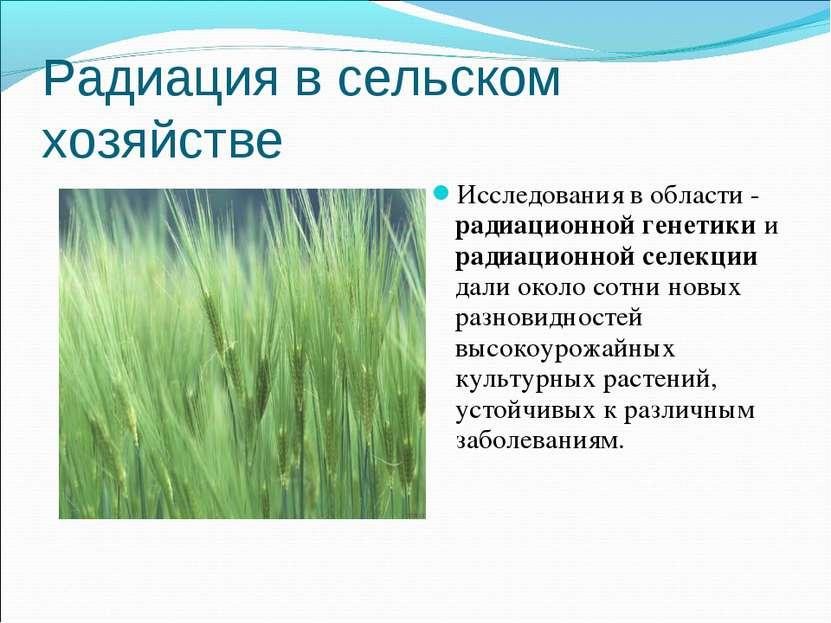 Радиация в сельском хозяйстве Исследования в области - радиационной генетики ...