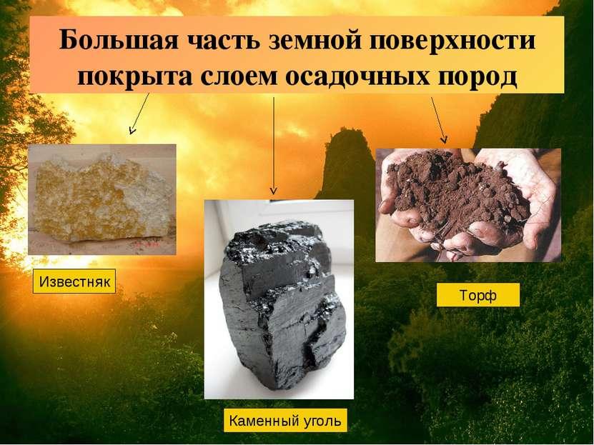 Большая часть земной поверхности покрыта слоем осадочных пород Известняк Каме...